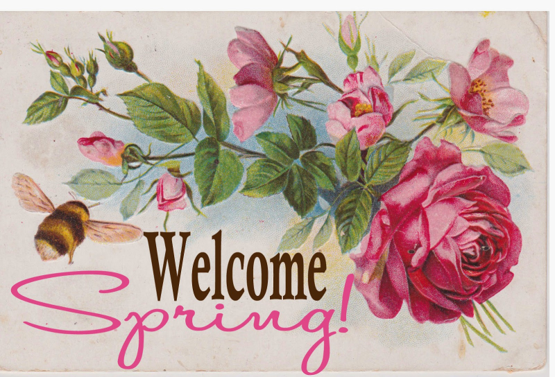 Welcome Spring jpeg
